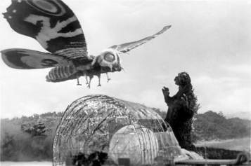 mothra-vs-Godzilla - Copy